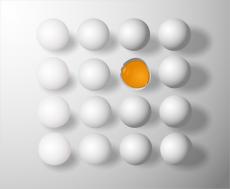 Read more about the article Per ogni piccola attività la divisa aziendale è indispensabile!
